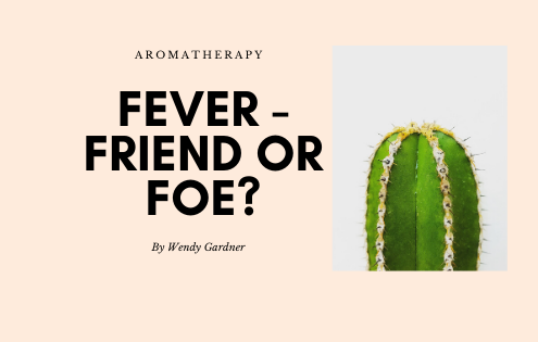 fever-friend-or-foe
